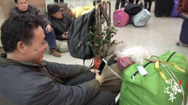 他转车三次站回家:一路守护一棵花