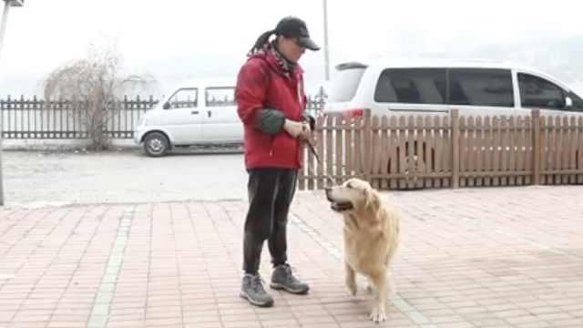 海归女硕士训导盲犬9年:月薪仅3千