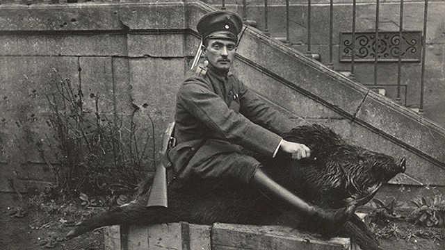 世界大战期间有强大力量的中国猪鬃