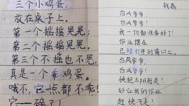 小学生原创诗歌走红,老师直呼意外