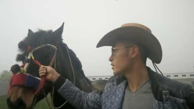 男生带3匹马上大学:从小没离开过马