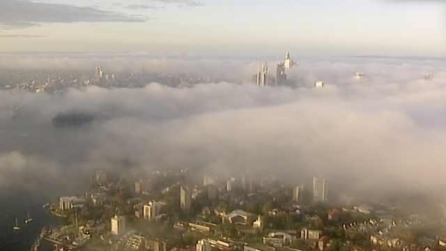 取消24个航班!悉尼几乎被浓雾淹没