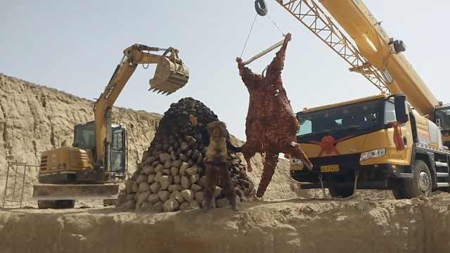 硬核烤肉!他动用吊车烤600斤骆驼