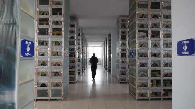 殡仪馆数百骨灰盒被弃,有遗体存8年