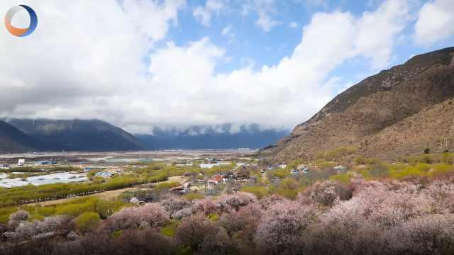 这些西藏最美的地方一定要去