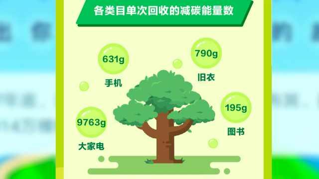 环保力量大!一年能种22万颗梭梭树
