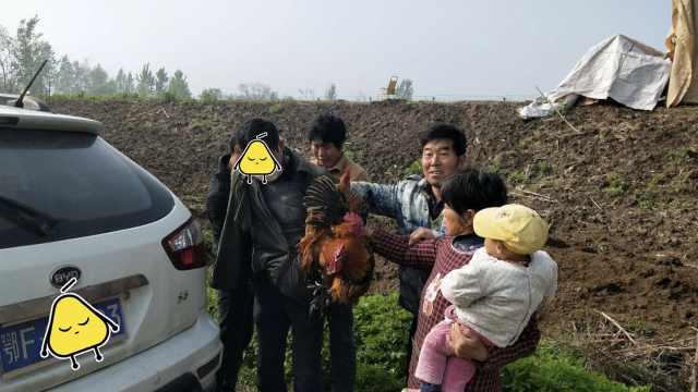 男子偷鸡被抓现行,鸡从裤兜里跳出