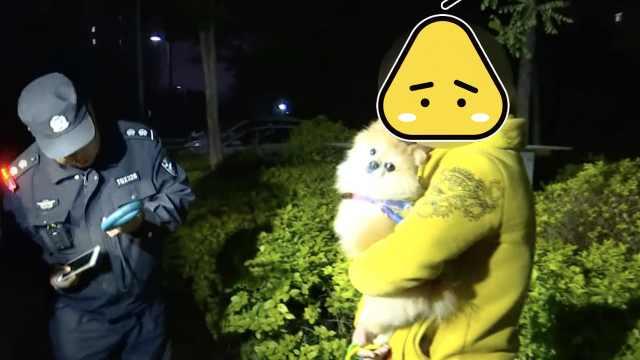 警方突击检查,无证犬主弃狗而逃
