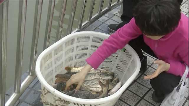 大妈放生男子捞鱼,两方起冲突争吵