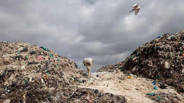 186国签反塑料垃圾协议,美国除外