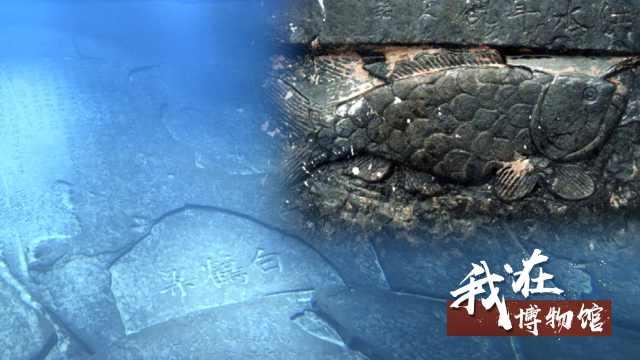 她在水下40米博物馆,讲解千年碑林