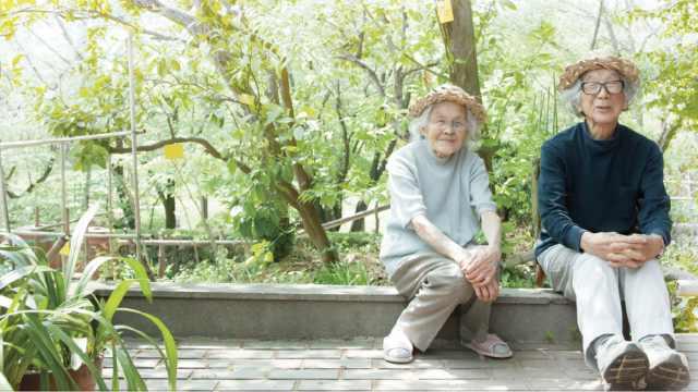高分纪录片:完美老年夫妻的样子
