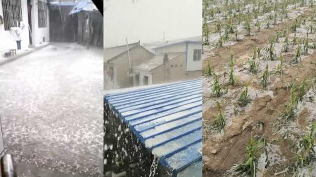 甘肃遭冰雹袭击,2千公顷农作物受灾