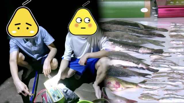 想加餐!2吃货禁渔期电百条鱼被抓