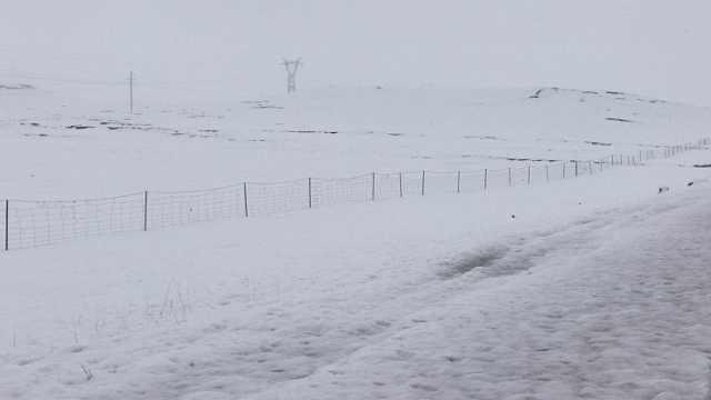 青海玉树突降大雪,压垮民工帐篷