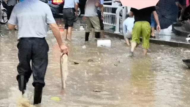 街道积水变鱼塘,市民集体出门捉鱼