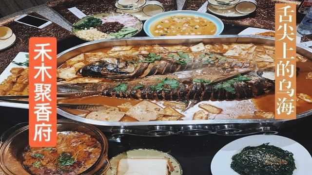 探店丨野生大鱼味蕾享受,胃小慎入