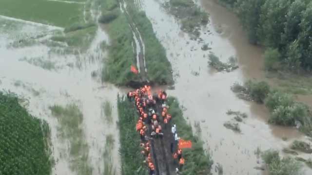 佳木斯河道决堤,消防跳水打桩封堵