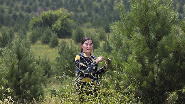 村支书李国琴:生态这碗饭我吃定了