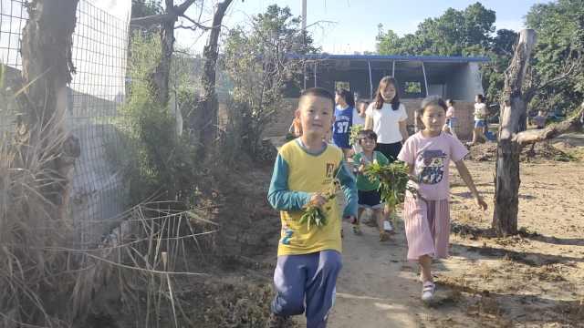 别人家幼儿园!建20亩动植物体验园