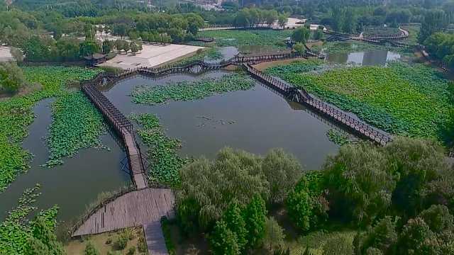 夏日白龟湖