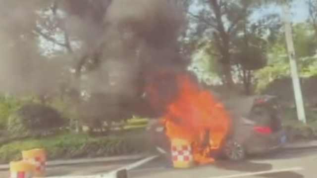 网约车着火撞花坛:乘客死亡,司机伤