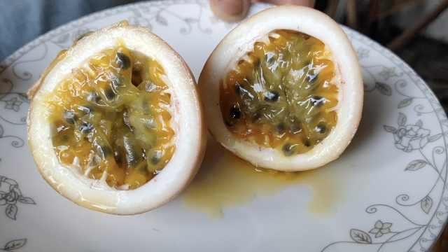 老婆孩子爱吃,老板种7大棚百香果