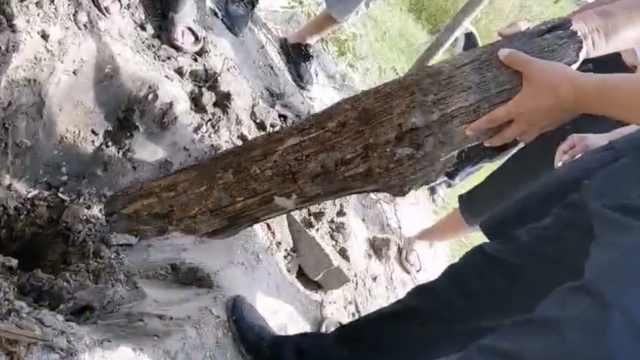 河南现商周墓群,神秘木桩用途成谜