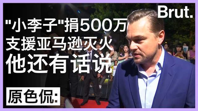 小李子捐款支援亚马逊:他还有话说