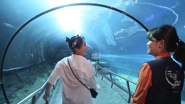 探秘台湾垦丁海洋生物博物馆