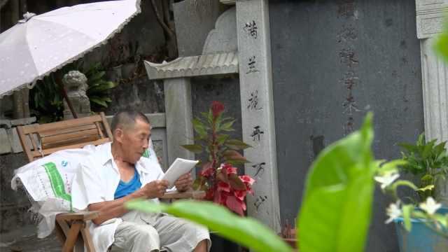 老人守墓陪亡妻10年:每天读诗种花