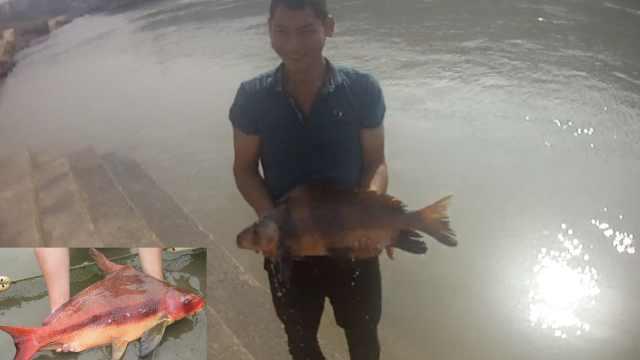 他捕怪鱼忙报警,竟是亚洲