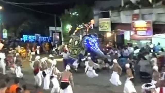 斯里兰卡庆典上大象发狂,17人受伤