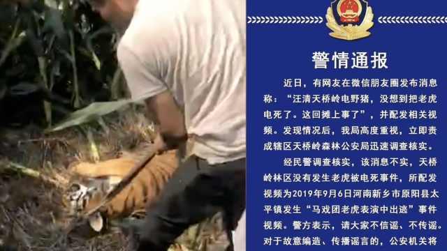 传保护区老虎被电死,警方辟谣追责