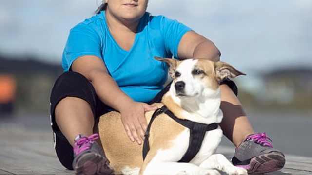 研究:主人超重更易养出超重的狗狗