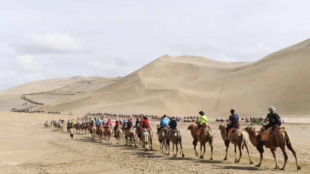 直播:鸣沙山月牙泉,敦煌国庆堵骆驼