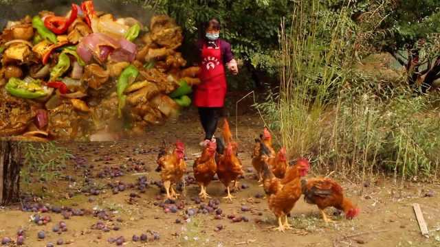 运动鸡!美味灶台柴火鸡,肉弹而不柴