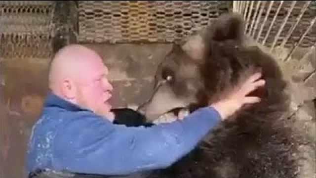 俄罗斯拳手与熊搏斗,动保组织反对
