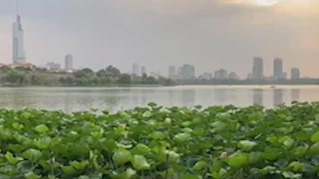 从古都到现代之城,台生眼中的南京