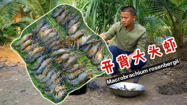 肉肥膏满罗氏虾,这样做最好吃!