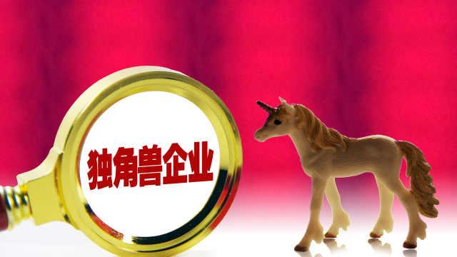 中国独角兽企业数量首次超过美国