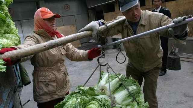 直播:囤秋菜几百斤!北方人的安全感