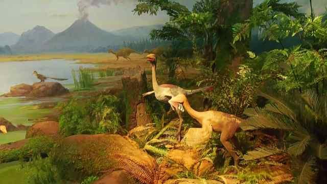 國家海洋博物館恐龍館