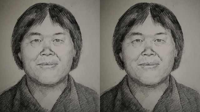 神秘人贩子梅姨案进展:找到2名儿童