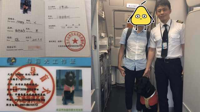 盲人携导盲犬坐地铁被拒:未戴嘴套
