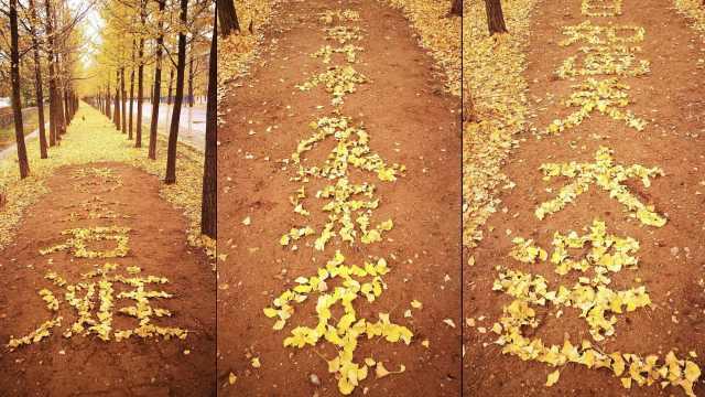 满地黄金!环卫工人用落叶摆字作诗