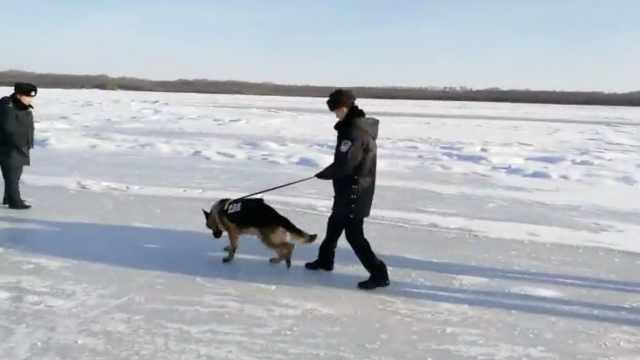边检民警日巡14里,警犬拉着冰上走