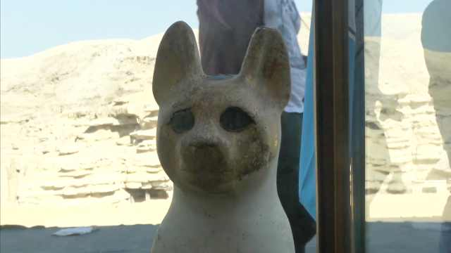埃及发现多具两千年多前动物木乃伊