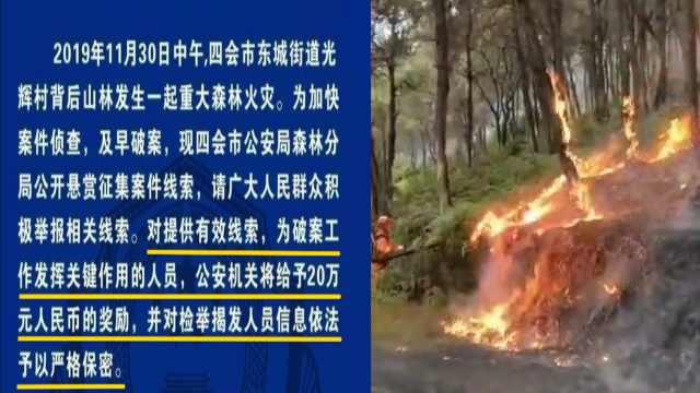 广东森林火灾,警方悬赏20万征线索