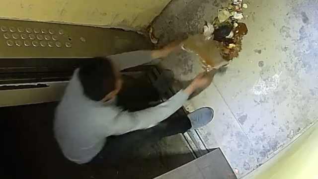 男子往电梯里倒垃圾,物业:他故意的